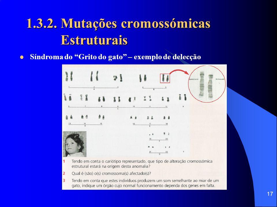 16 1.3.2. Mutações cromossómicas Estruturais Translocação