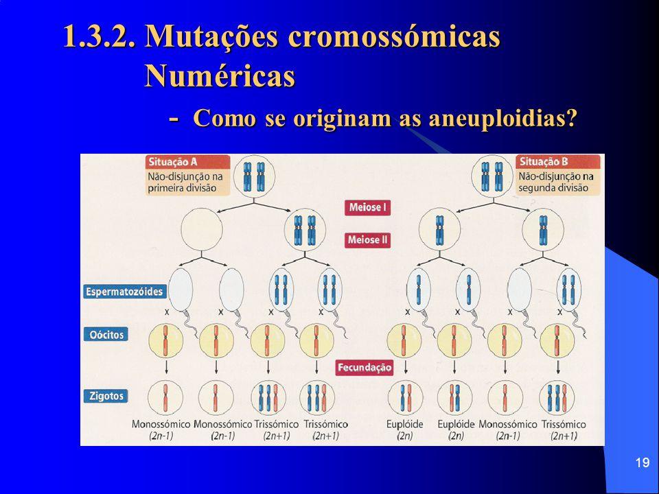 18 1.3.2. Mutações cromossómicas Numéricas Provocam alterações no número típico de cromossomos da espécie (cariótipo). Aneuploidias - os erros envolve