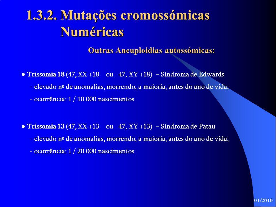 20 1.3.2. Mutações cromossómicas Numéricas Trissomia 21 (Síndroma de Down) – Aneuploidia autossómica  É a mais comum entre os nados-vivos.  A carga