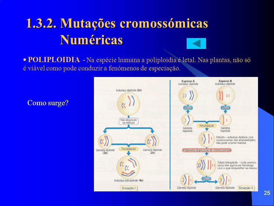 24 1.3.2. Mutações cromossómicas Numéricas Anomalias gaméticas que justificam algumas Aneuploidias heterossómicas