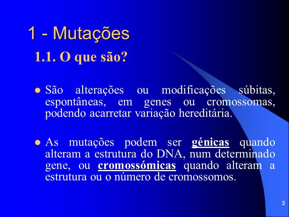 2 Sumário 1 - Mutações 1.1 - O que são? 1.2 - Como/ Quando/ Onde / ocorrem? 1.3 - Tipos de mutações e exemplos: 1.3.1.- génicas; 1.3.2.- cromossómicas