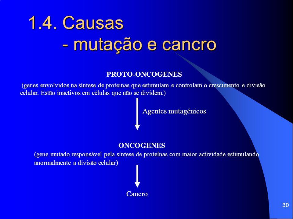 29 1.4. Causas - mutação e cancro ● Alguns agentes mutagénicos provocam mutações em genes envolvidos no controlo da divisão celular sendo responsáveis