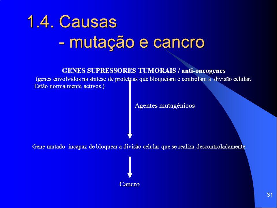 30 1.4. Causas - mutação e cancro (genes envolvidos na síntese de proteínas que estimulam e controlam o crescimento e divisão celular. Estão inactivos