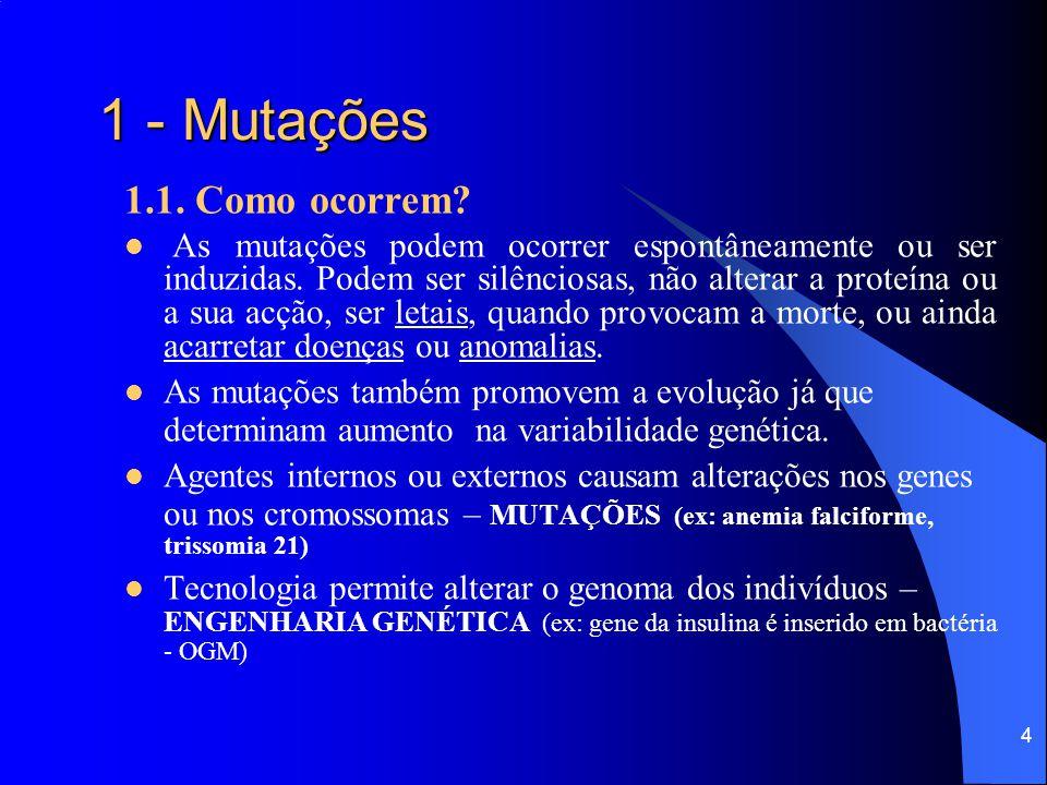 3 1 - Mutações 1.1. O que são? São alterações ou modificações súbitas, espontâneas, em genes ou cromossomas, podendo acarretar variação hereditária. A