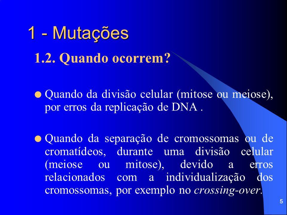 5 1 - Mutações 1.2.Quando ocorrem.