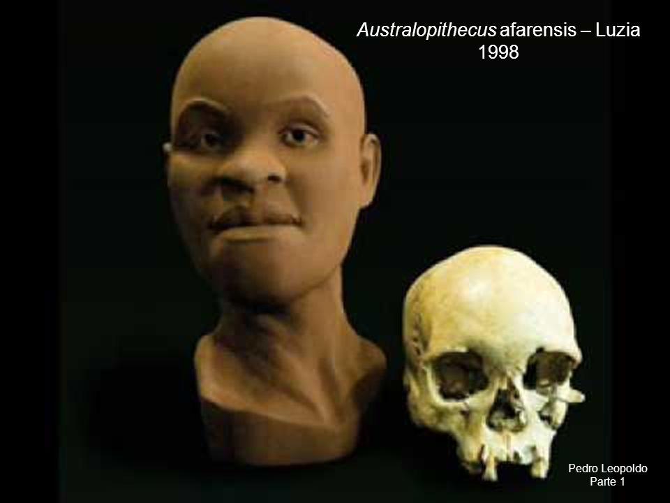 Australopithecus afarensis – Luzia 1998 Pedro Leopoldo Parte 1