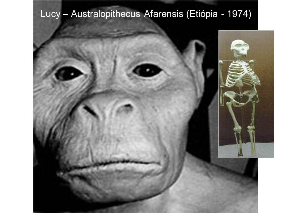 Lucy – Australopithecus Afarensis (Etiópia - 1974)