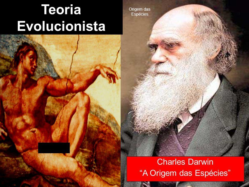 """Teoria Criacionista Teoria Evolucionista Charles Darwin """"A Origem das Espécies"""" Origem das Espécies"""