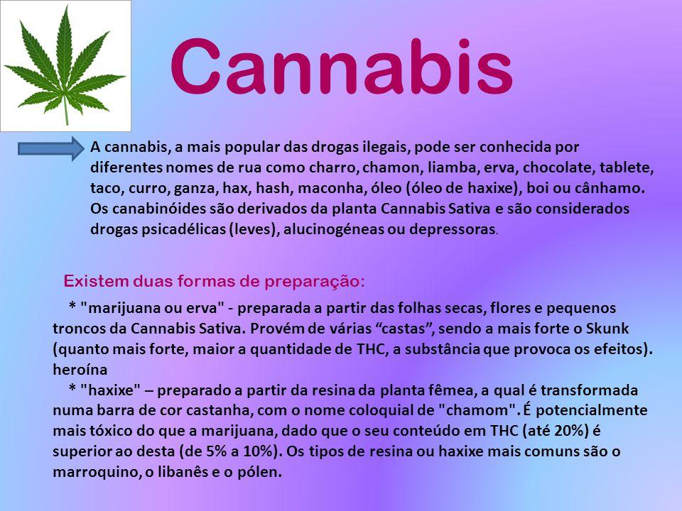 Cannabis A cannabis, a mais popular das drogas ilegais, pode ser conhecida por diferentes nomes de rua como charro, chamon, liamba, erva, chocolate, t