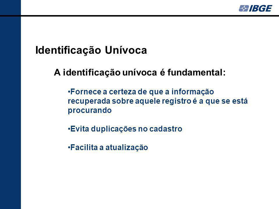 Identificação Unívoca A identificação unívoca é fundamental: Fornece a certeza de que a informação recuperada sobre aquele registro é a que se está pr