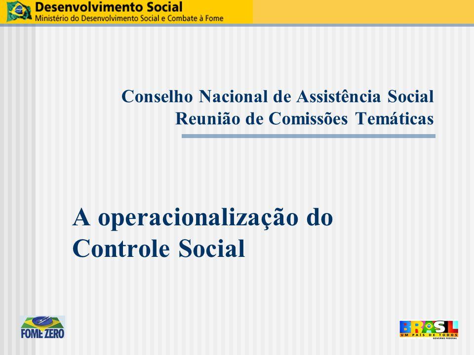 Conselho Nacional de Assistência Social Reunião de Comissões Temáticas A operacionalização do Controle Social