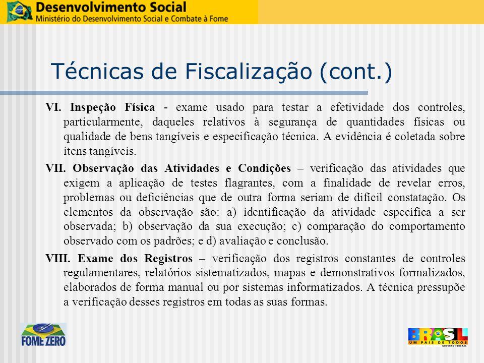 Técnicas de Fiscalização (cont.) VI.
