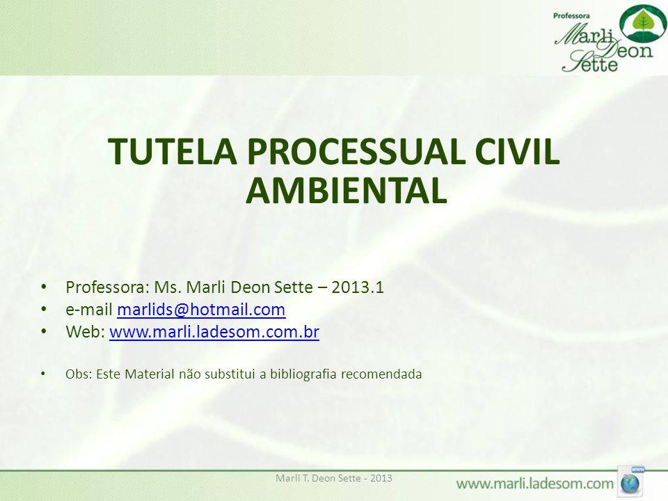 Dano Ambiental e Responsabilidade Civil INSTRUMENTOS PARA TUTELA CIVIL AMBIENTAL: PREVISÃO CONSTITUCIONAL E INFRACONSTITUCIONAL Marli T.