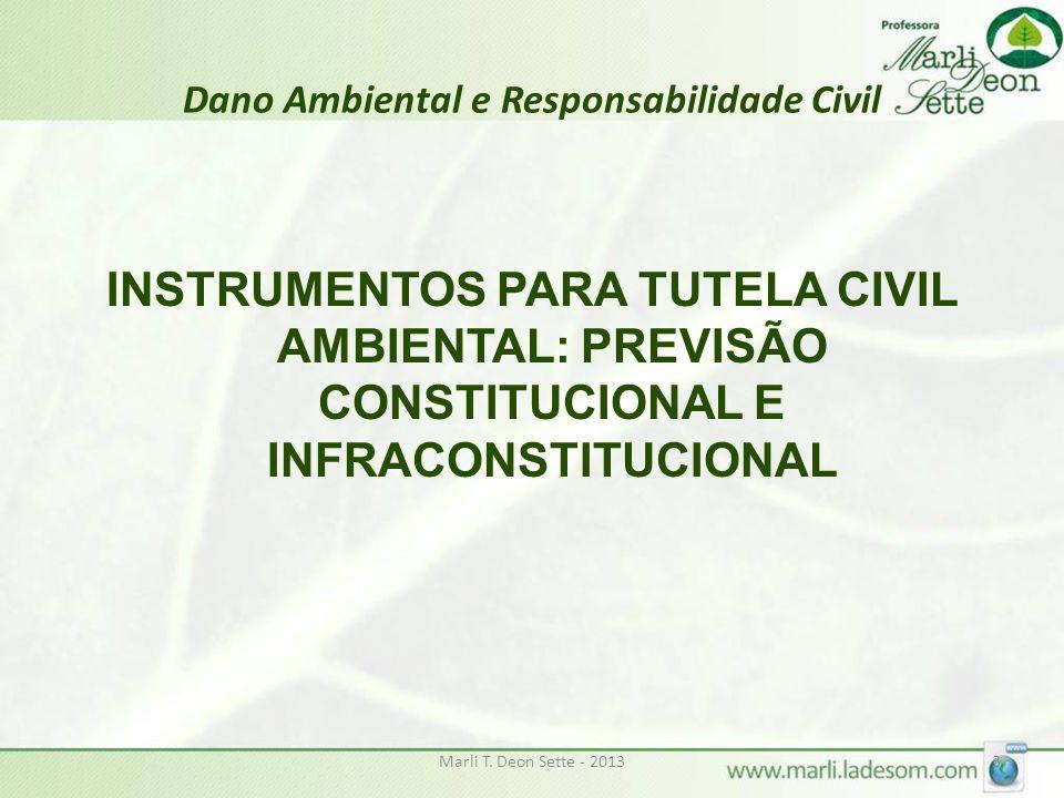 Dano Ambiental e Responsabilidade Civil INSTRUMENTOS PARA TUTELA CIVIL AMBIENTAL: PREVISÃO CONSTITUCIONAL E INFRACONSTITUCIONAL Marli T. Deon Sette -