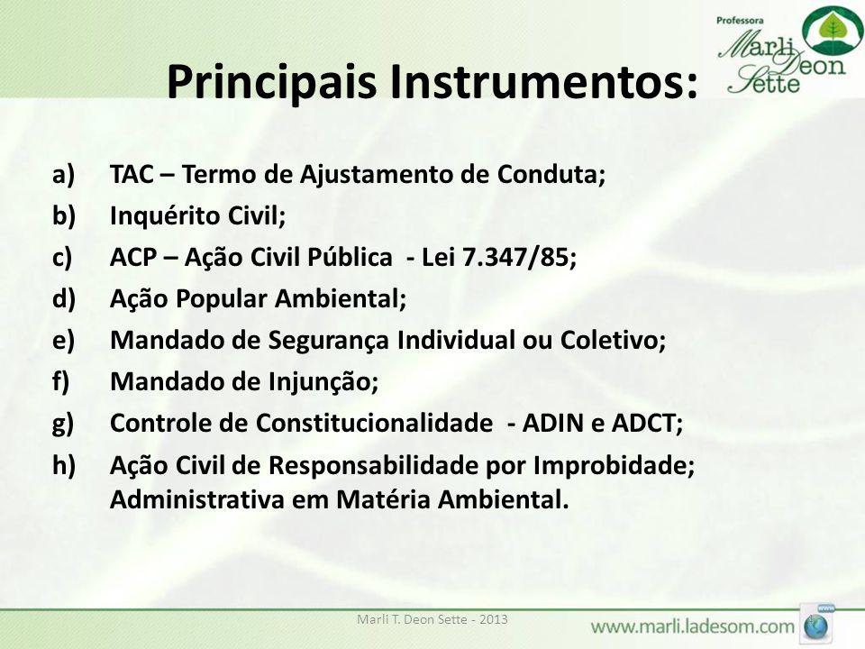 Principais Instrumentos: a)TAC – Termo de Ajustamento de Conduta; b)Inquérito Civil; c)ACP – Ação Civil Pública - Lei 7.347/85; d)Ação Popular Ambient