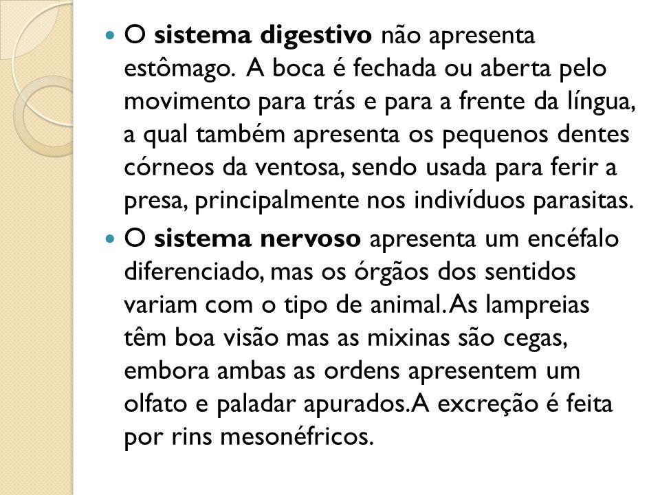 Difere dos demais vertebrados por apresentarem um sistema circulatorio parcialmente aberto com grandes seios sangüíneos.