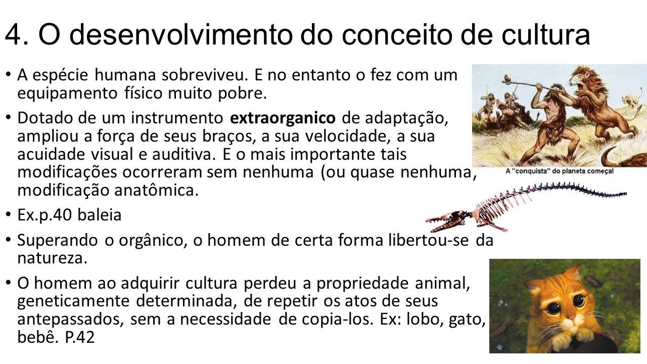4. O desenvolvimento do conceito de cultura A espécie humana sobreviveu. E no entanto o fez com um equipamento físico muito pobre. Dotado de um instru