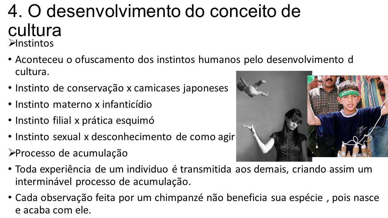 4. O desenvolvimento do conceito de cultura  Instintos Aconteceu o ofuscamento dos instintos humanos pelo desenvolvimento d cultura. Instinto de cons
