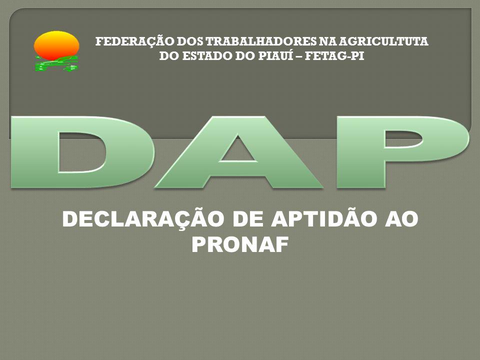 DECLARAÇÃO DE APTIDÃO AO PRONAF FEDERAÇÃO DOS TRABALHADORES NA AGRICULTUTA DO ESTADO DO PIAUÍ – FETAG-PI