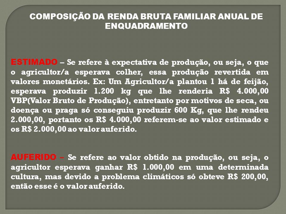 COMPOSIÇÃO DA RENDA BRUTA FAMILIAR ANUAL DE ENQUADRAMENTO ESTIMADO – Se refere à expectativa de produção, ou seja, o que o agricultor/a esperava colher, essa produção revertida em valores monetários.