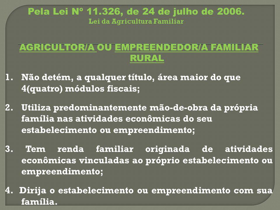 AGRICULTOR/A OU EMPREENDEDOR/A FAMILIAR RURAL 1.Não detém, a qualquer título, área maior do que 4(quatro) módulos fiscais; 2.Utiliza predominantemente mão-de-obra da própria família nas atividades econômicas do seu estabelecimento ou empreendimento; 3.