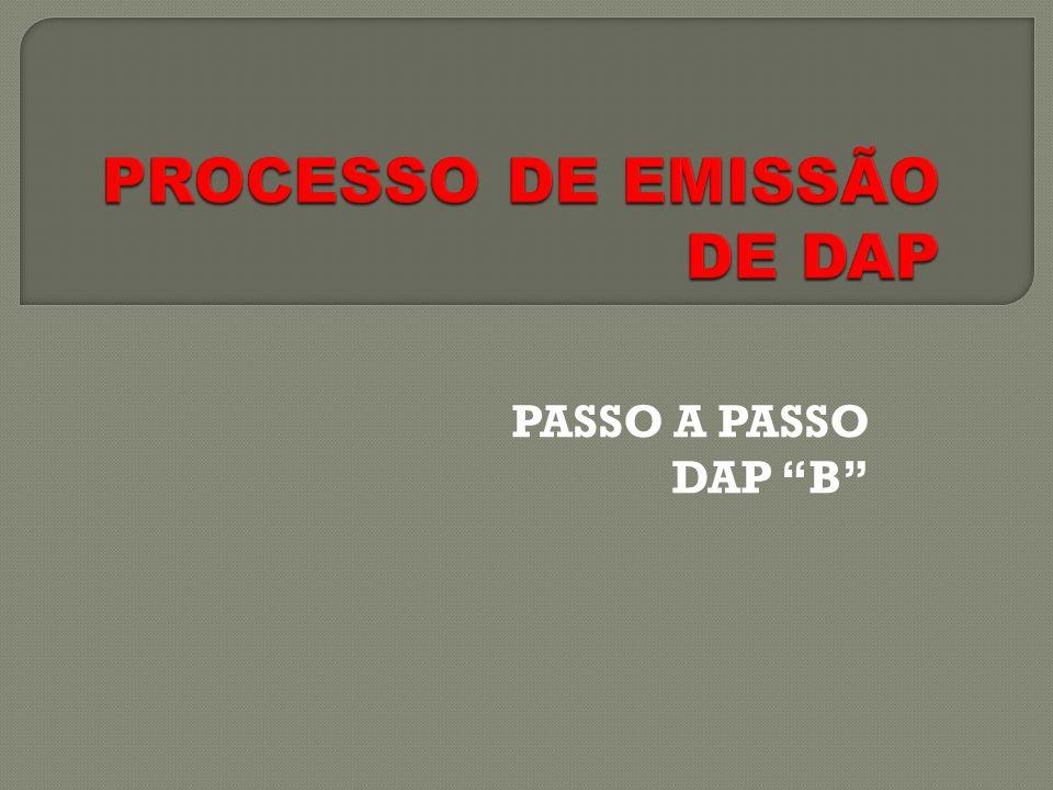 PASSO A PASSO DAP B