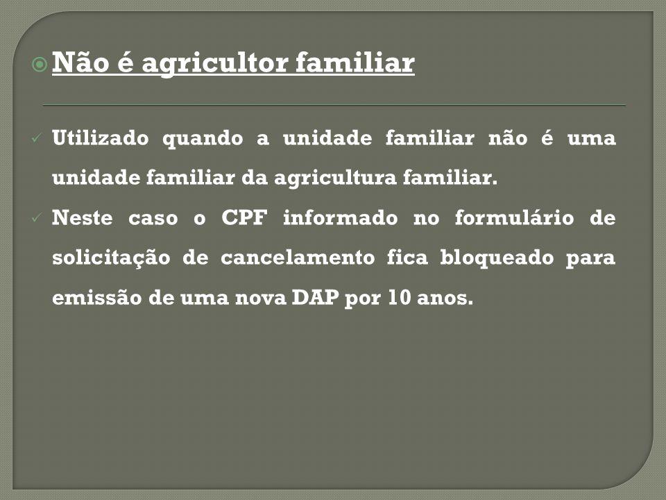  Não é agricultor familiar Utilizado quando a unidade familiar não é uma unidade familiar da agricultura familiar.