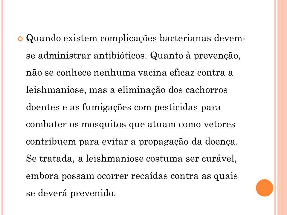Quando existem complicações bacterianas devem- se administrar antibióticos. Quanto à prevenção, não se conhece nenhuma vacina eficaz contra a leishman