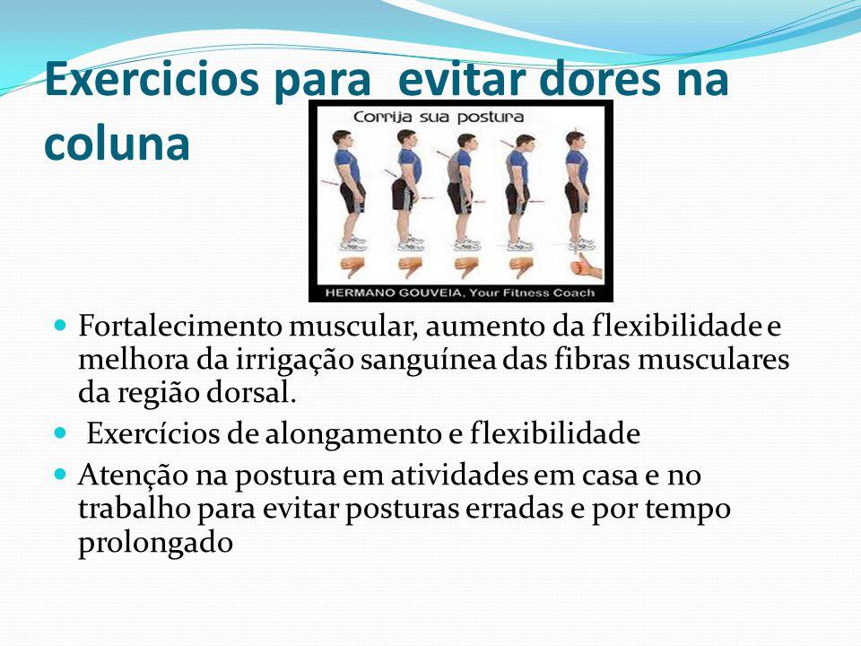 Exercicios para evitar dores na coluna Fortalecimento muscular, aumento da flexibilidade e melhora da irrigação sanguínea das fibras musculares da reg