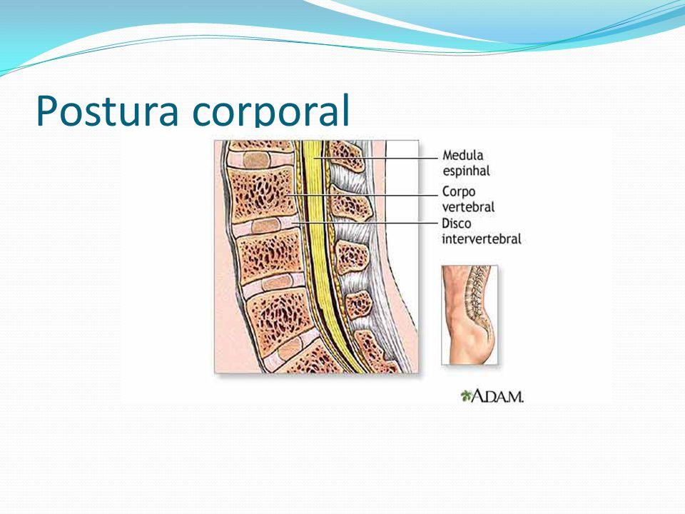 A Lordose é um aumento exagerado nas curvaturas cervical e lombar.