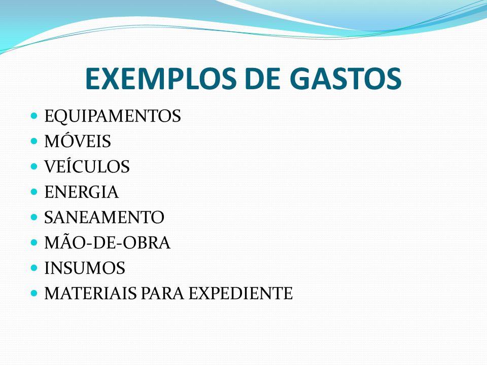 EXEMPLOS DE GASTOS EQUIPAMENTOS MÓVEIS VEÍCULOS ENERGIA SANEAMENTO MÃO-DE-OBRA INSUMOS MATERIAIS PARA EXPEDIENTE