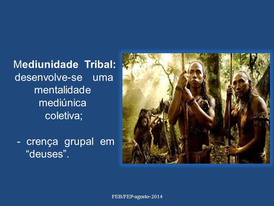 """Mediunidade Tribal: desenvolve-se uma mentalidade mediúnica coletiva; - crença grupal em """"deuses"""". FEB/FEP-agosto- 2014"""