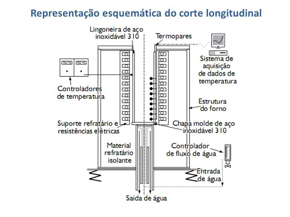 Representação esquemática do corte longitudinal