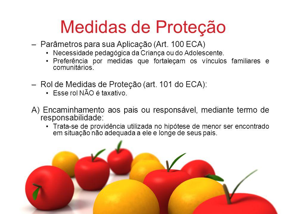 Medidas de Proteção –Parâmetros para sua Aplicação (Art. 100 ECA) Necessidade pedagógica da Criança ou do Adolescente. Preferência por medidas que for