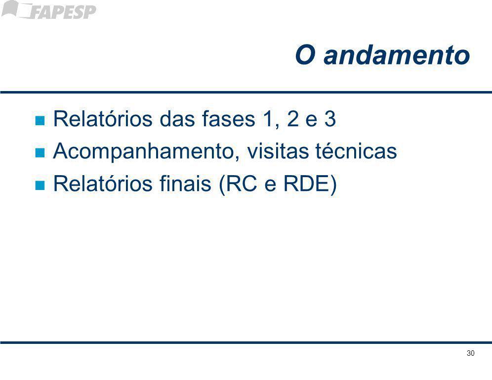 O andamento n Relatórios das fases 1, 2 e 3 n Acompanhamento, visitas técnicas n Relatórios finais (RC e RDE) 30