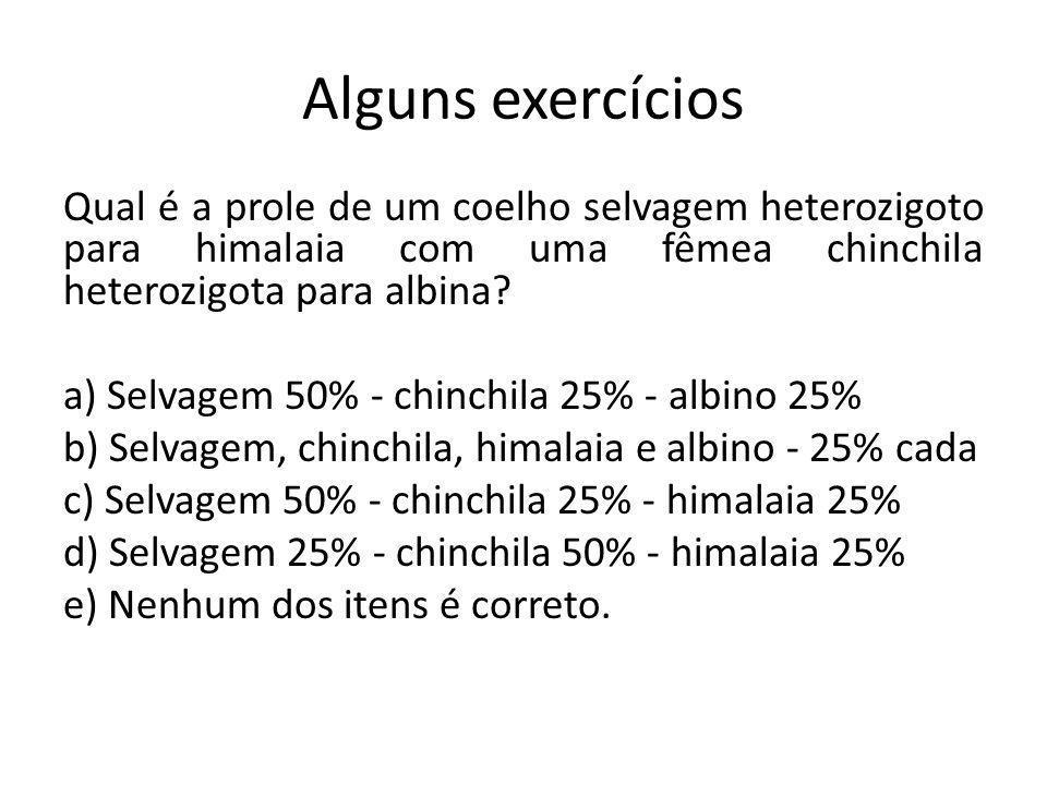 Alguns exercícios Qual é a prole de um coelho selvagem heterozigoto para himalaia com uma fêmea chinchila heterozigota para albina? a) Selvagem 50% -