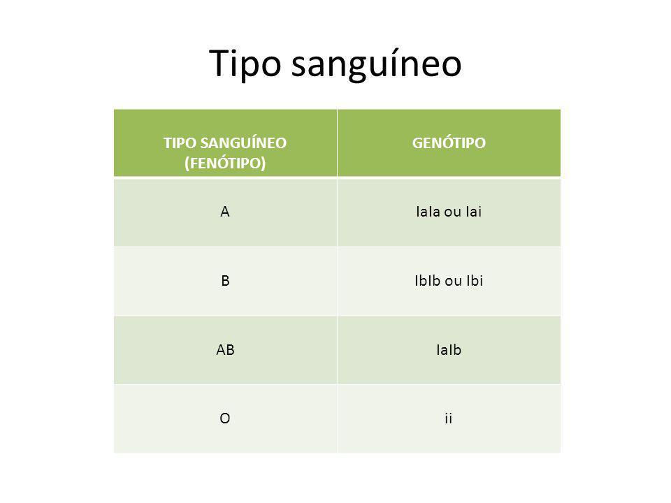 Tipo sanguíneo TIPO SANGUÍNEO (FENÓTIPO) GENÓTIPO AIaIa ou Iai BIbIb ou Ibi ABIaIb Oii