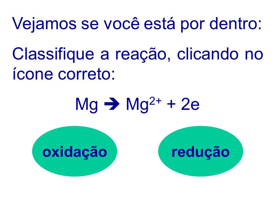 Podemos representar uma equação de redução da seguinte forma: Al 3+ + 3e  Al 2H + + 2e  H 2 Cl 2 + 2e  2Cl -
