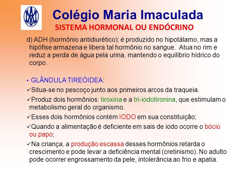Colégio Maria Imaculada SISTEMA HORMONAL OU ENDÓCRINO d) ADH (hormônio antidiurético): é produzido no hipotálamo, mas a hipófise armazena e libera tal