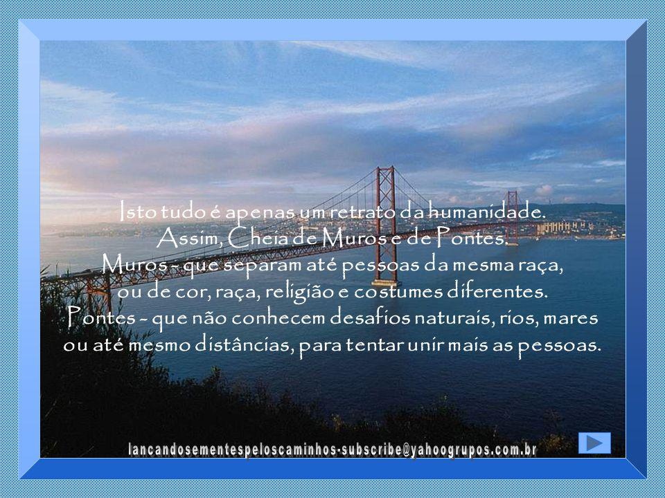 Uma ponte com a extensão de 552,40 metros, com vão livre de 305 metros e altura de 78 metros.