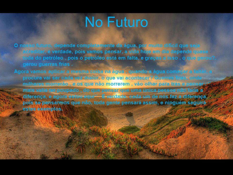 No Futuro O nosso futuro, depende completamente da água, por muito difícil que seja acreditar, é verdade, pois vamos pensar, a vida hoje em dia depend