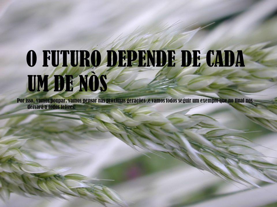 O FUTURO DEPENDE DE CADA UM DE NÒS Por isso, vamos poupar, vamos pensar nas próximas gerações,e vamos todos seguir um exemplo que no final nos deixará