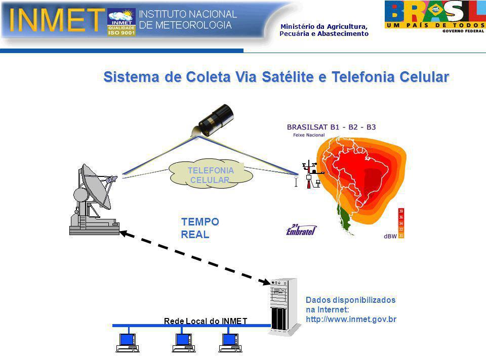 Ministério da Agricultura, Pecuária e Abastecimento TEMPO REAL Rede Local do INMET Dados disponibilizados na Internet: http://www.inmet.gov.br TELEFON