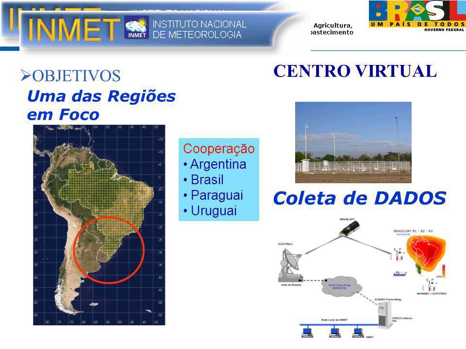 Ministério da Agricultura, Pecuária e Abastecimento CENTRO VIRTUAL  OBJETIVOS Coleta de DADOS Uma das Regiões em Foco Cooperação Argentina Brasil Paraguai Uruguai