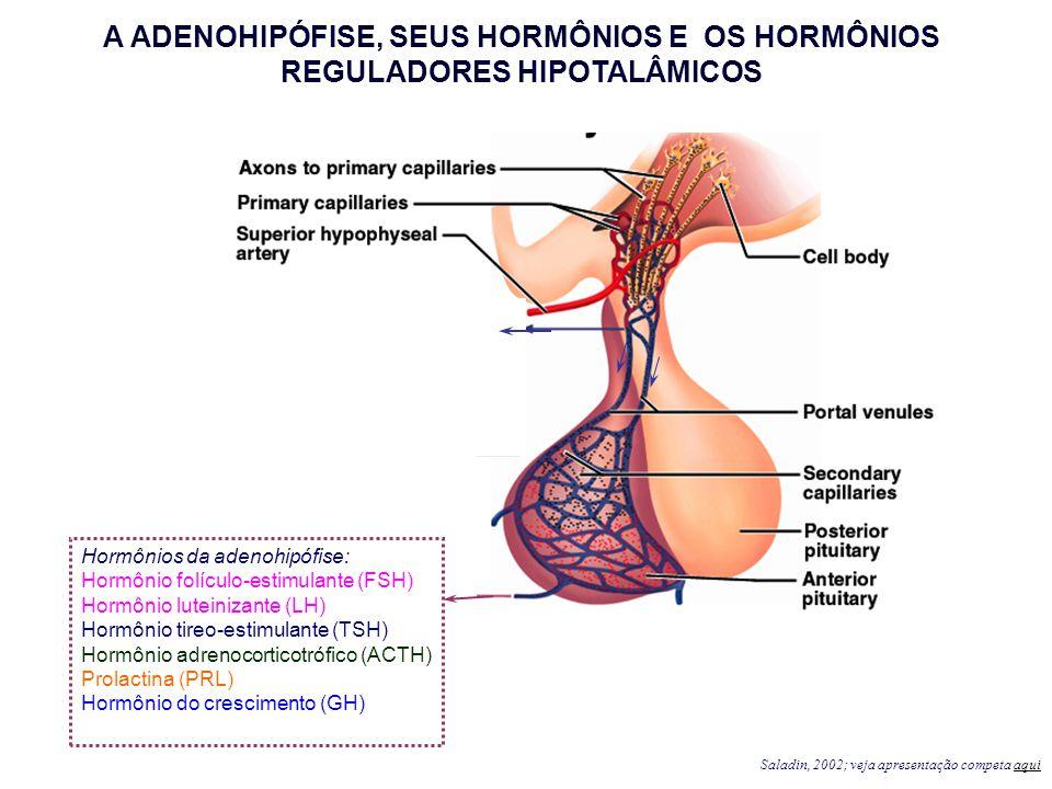 Hormônios da adenohipófise: Hormônio folículo-estimulante (FSH) Hormônio luteinizante (LH) Hormônio tireo-estimulante (TSH) Hormônio adrenocorticotróf