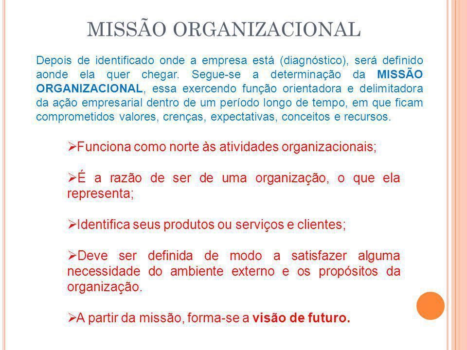MISSÃO ORGANIZACIONAL Depois de identificado onde a empresa está (diagnóstico), será definido aonde ela quer chegar. Segue-se a determinação da MISSÃO