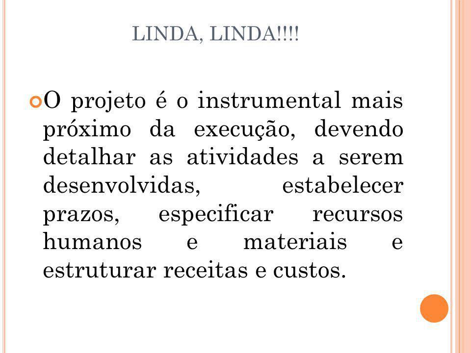 LINDA, LINDA!!!! O projeto é o instrumental mais próximo da execução, devendo detalhar as atividades a serem desenvolvidas, estabelecer prazos, especi