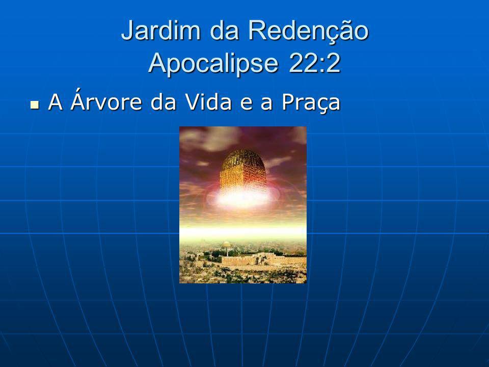 Jardim da Redenção Apocalipse 22:2 A Árvore da Vida e a Praça A Árvore da Vida e a Praça