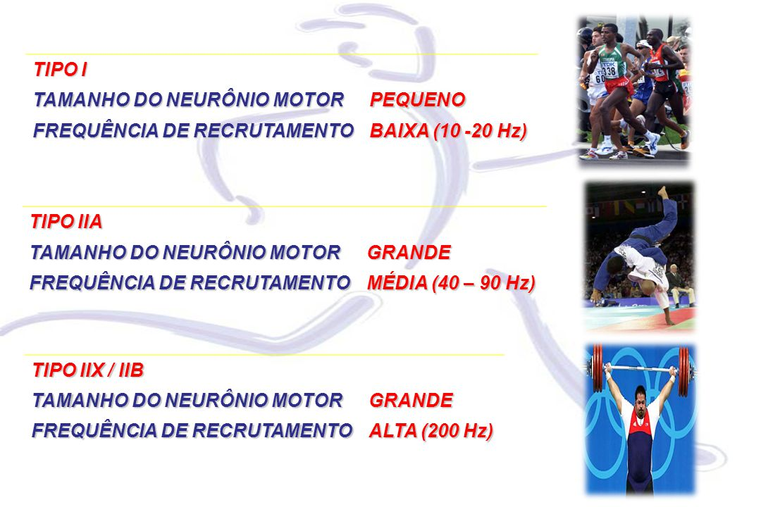 TIPO IIA TAMANHO DO NEURÔNIO MOTOR GRANDE FREQUÊNCIA DE RECRUTAMENTO MÉDIA (40 – 90 Hz) TIPO IIX / IIB TAMANHO DO NEURÔNIO MOTOR GRANDE FREQUÊNCIA DE