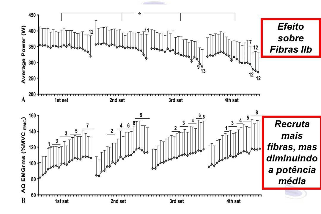Recruta mais fibras, mas diminuindo a potência média Efeito sobre Fibras IIb